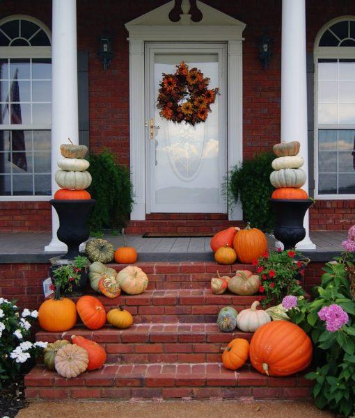Annual Bundle of Porches