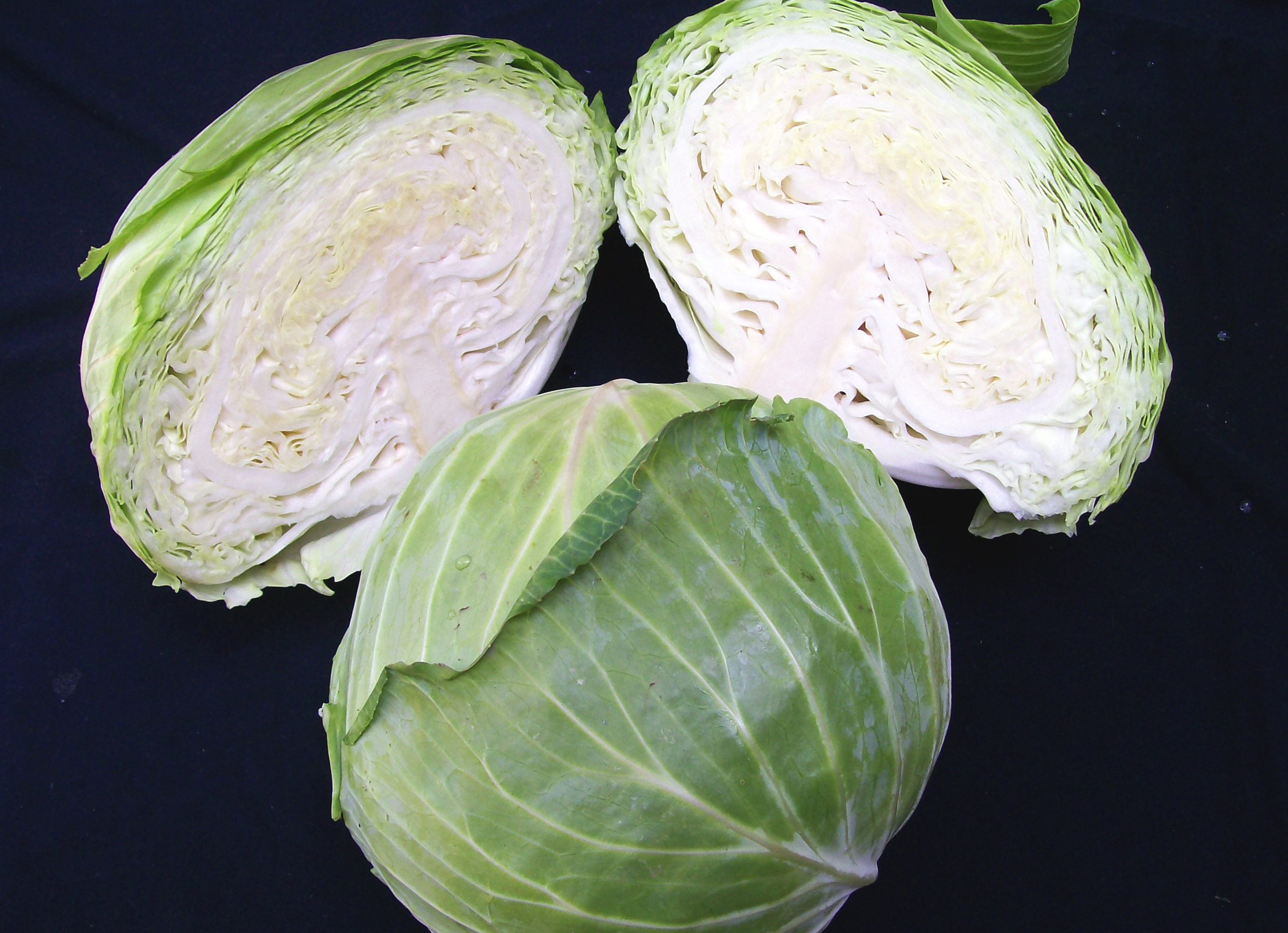 Early Flat Dutch Cabbage 2 g  Southern Exposure Seed