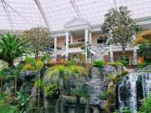 Reasons Love Gaylord Opryland Hotel In