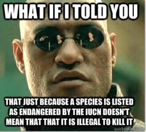 Morpheus correctly points out that IUCN Red List listing are scientific assessments with no inherent legal authority