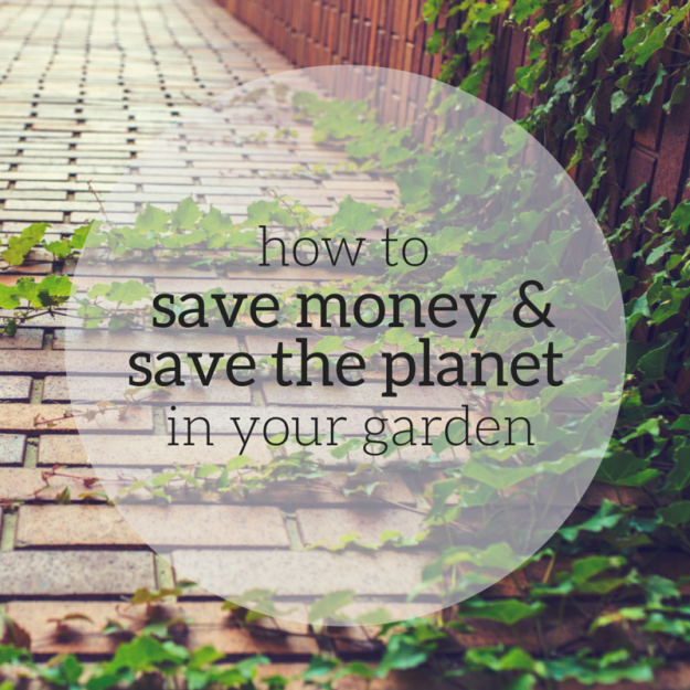 Save Money in the Garden