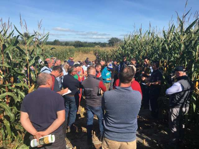 Group at maize open day
