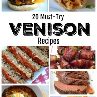 20 Must Try Venison Recipes