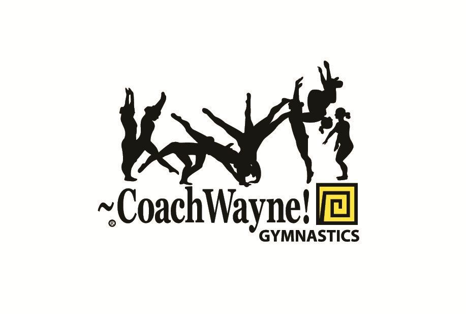 Southern Mamas » Blog Archive » Gymnastics, tumbling