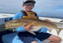 Maryland Fishing Report for Friday, August 7, 2020
