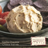 Taste Test Tuesday: Tastefully Simple's Nacho Cheddar Cheese Ball Mix