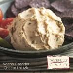Taste Test Tuesday: Tastefully Simple's Nacho Cheddar Cheese Ball Mix