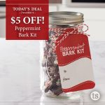 TS Deal of the Day: Peppermint Bark Kit