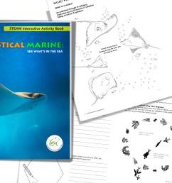 interactive steam activity book set [ 3600 x 2400 Pixel ]