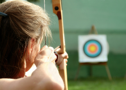 Image result for bullseye with bow and arrow
