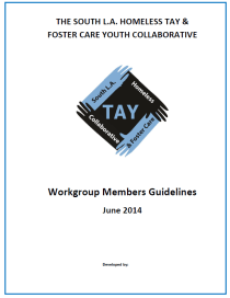 Workgroup Guideline Graphics