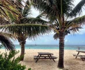 Sandy Island_3