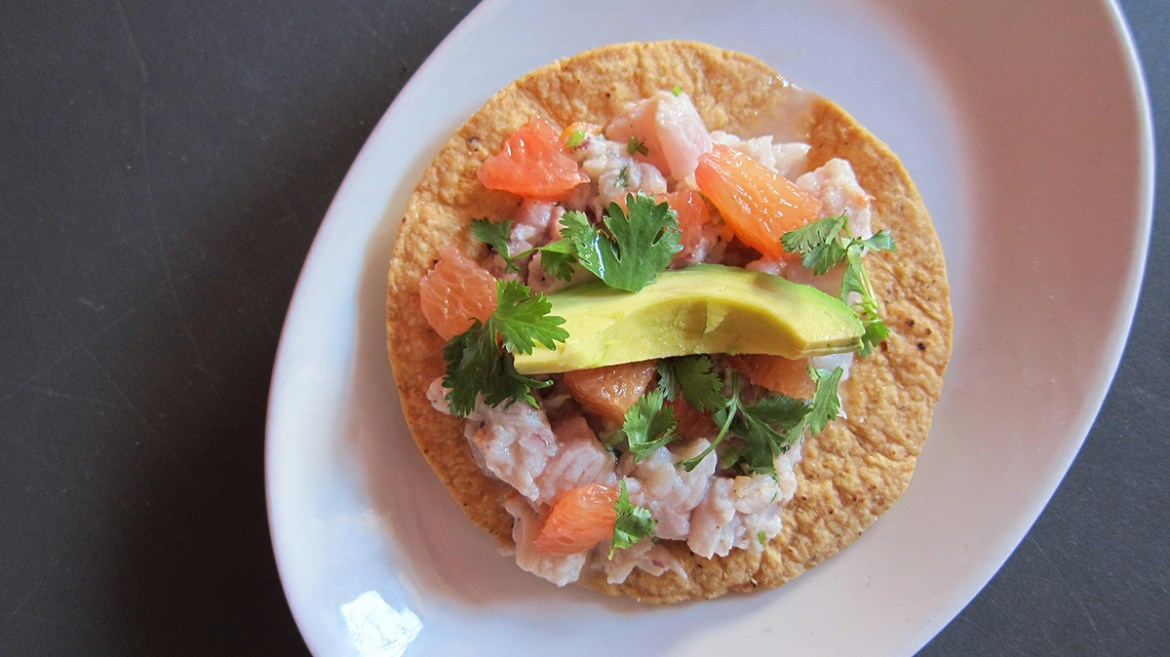 SS Aug Whitefish Ceviche 16x9