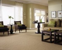 SUPER-CLEAN for Best Results ~ Carpet and Upholstery ...