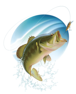Fish Days | Southside Feed and Supply
