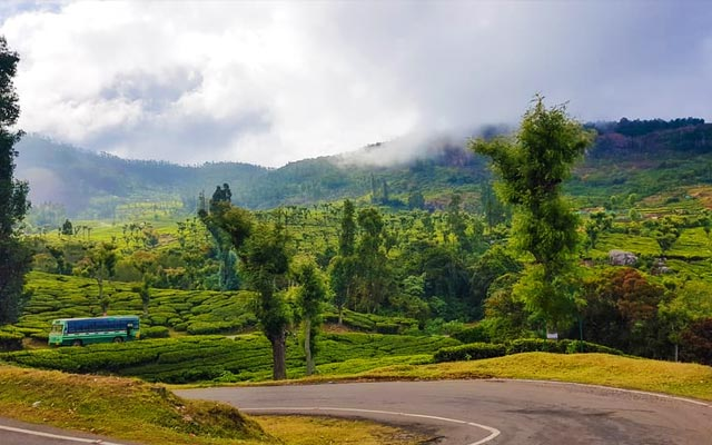 A Spectacular view of Ooty hills in Tamilnadu