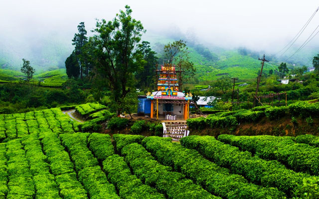 A colourful village temple amidst tea gardens in Megamalai, Tamil Nadu