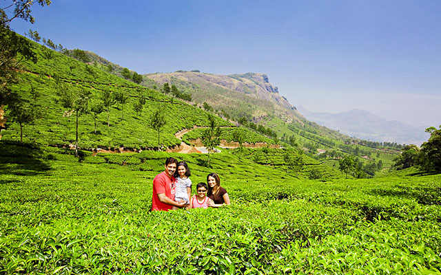 A family enjoying their holiday in Munnar Tea plantation.