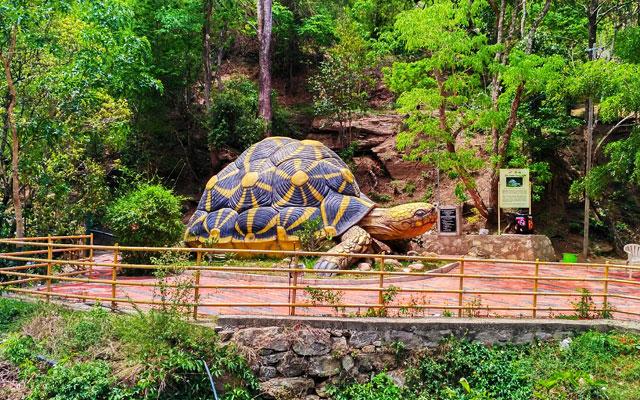 Chinnar Wildlife Sanctuary in Idukki district of Kerala