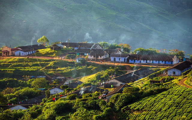 Houses for plantation workers in Munnar tea plantations, Kerala, India.