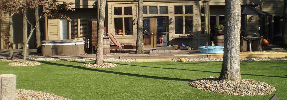 Backyard Dog Grass