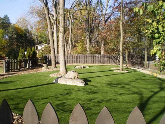 Dog Run Backyard