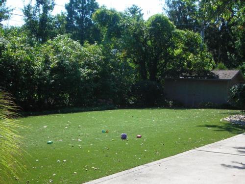 Dog Lawn2