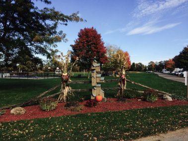 October Garden Image