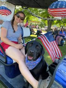 Golf Cart Parade - Cute Lab Dog