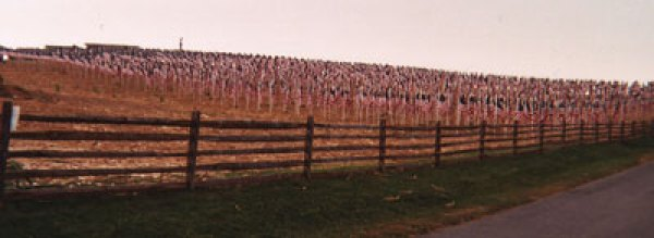 3000 Flags