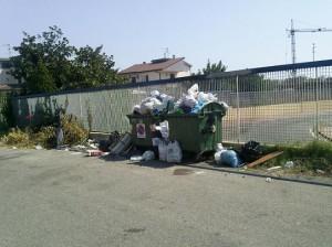 Un cassonetto della spazzatura ricolmo in un Comune del soveratese