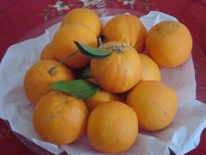 Arance - frutto di ricco di vitamina C