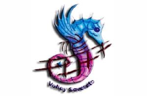 Volley_Soverato