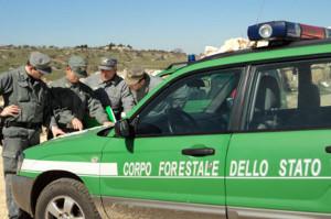 Corpo-Forestale-dello-Stato-indagini
