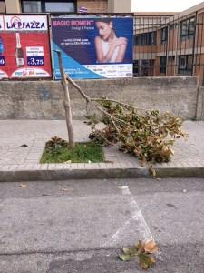 Lamezia Terme – Tolleranza zero contro gli atti vandalici
