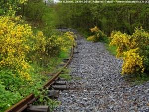 Reportage dell'Associazione Ferrovie in Calabria sulla Ferrovia Silana