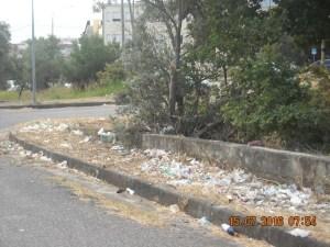 FOTO   Strada per Soverato Superiore invasa dai rifiuti