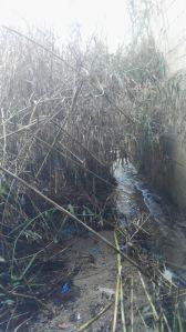Soverato – Intervento straordinario pulizia fossi raccolta acque meteoriche