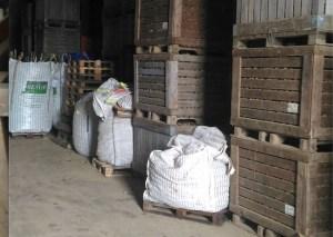 Sequestrate dalle Gdf oltre mille quintali di patate