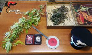 Trovato con pianta di marijuana e distintivo dei Carabinieri, 49enne denunciato