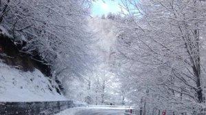 Maltempo – Chiusa per frana la Ss 107, disagi per neve e ghiaccio in diversi centri