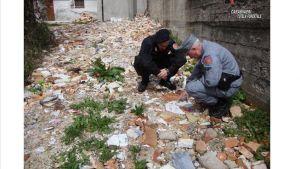 Serra San Bruno – Resti umani e vestiti di salme tra i rifiuti di un cimitero, denunciato Priore