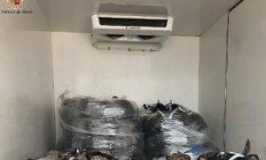 Una tonnellata di molluschi sequestrata dalla polizia stradale nel catanzarese