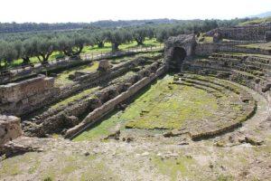 Al Parco Archeologico Nazionale di Scolacium la giornata nazionale della cultura del vino e dell'olio