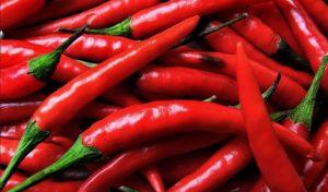Il peperoncino made in Calabria non è contaminato da pesticidi
