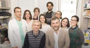 Scoperta all'Università di Catanzaro l'origine dei tumori del cuore