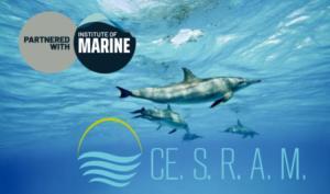 Il CESRAM stringe un'importante partnership con IMAREST
