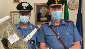 A spasso con 1,3 kg di marijuana, 56enne calabrese arrestato a Riccione