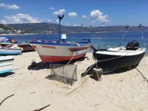 """Tartaruga """"caretta caretta"""" nidifica sulla spiaggia di Soverato"""
