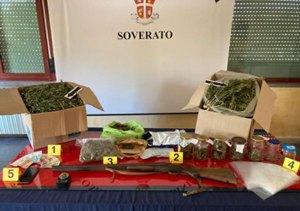 Davoli – 5 kg di marijuana in casa e 24 piante di cannabis in giardino, 27enne arrestato